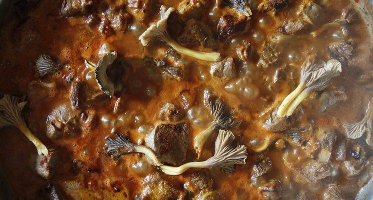 Rezept, Reh, Curry, Pilze, Pfifferling, Jagd, Wild, Wildbret