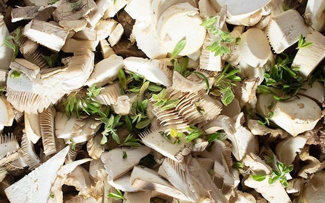Kräuter, Pilze und Wildfleisch gemeinsam in der Pfanne